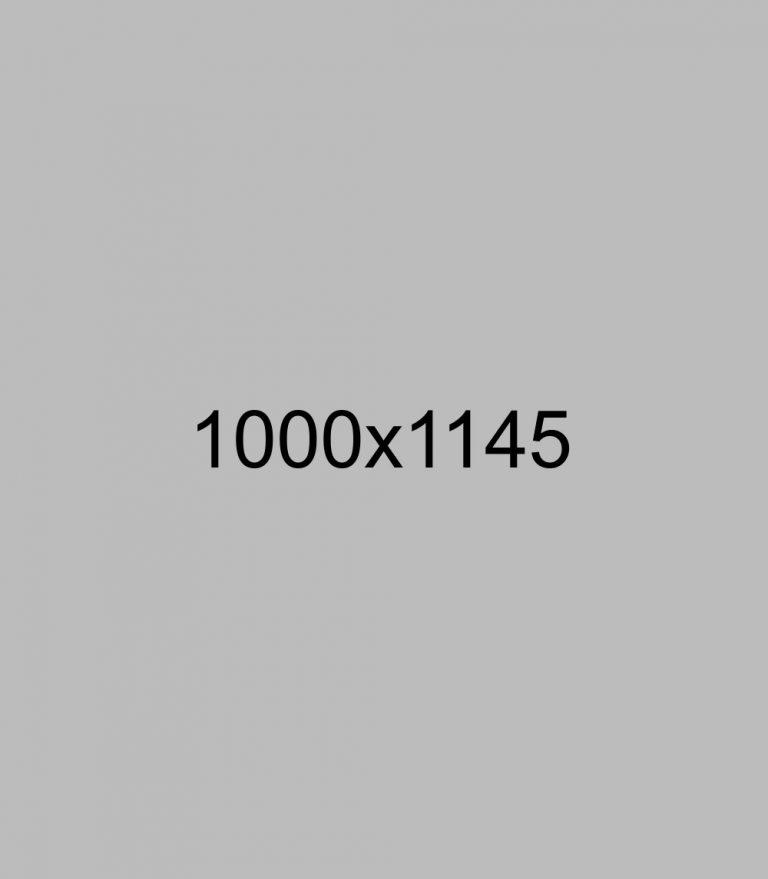 shutterstock_103792316
