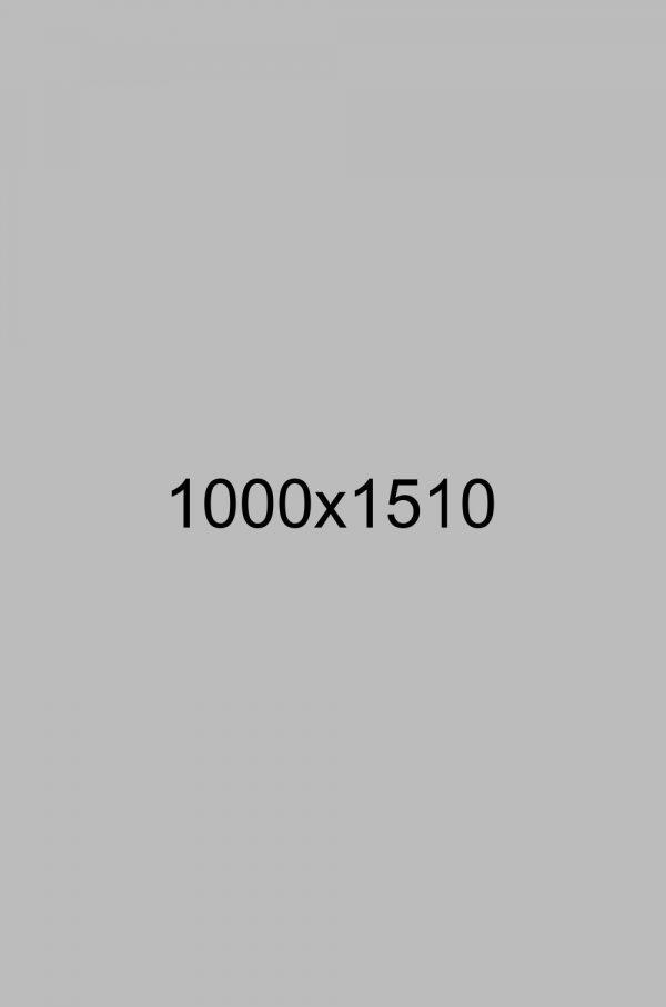 shutterstock_121624603